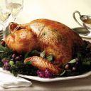shallot-turkey-b.jpgщ
