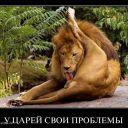 1299140629_demotivatory_03