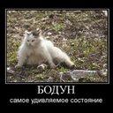 бодун