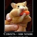 Совесть - Хомяк