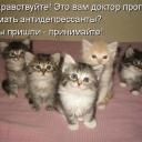 statusy_v_kartinkah_6