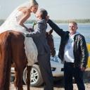 невеста на коне целует жениха