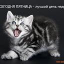 70190432_CHto_segodnya_pyatnica